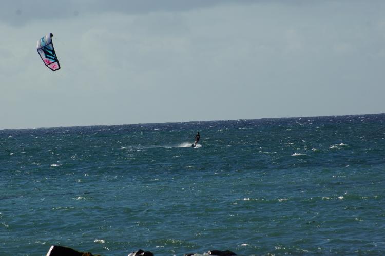 Naish Alana kite 2014